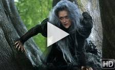 Teaser du film Into the Woods