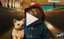 Bande-annonce du film Paddington
