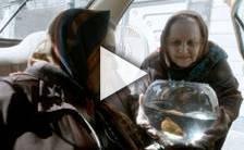 Bande-annonce du film Taxi Teheran