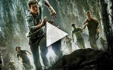Bande-annonce du film Le Labyrinthe: La Terre brûlée