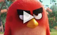 Bande-annonce du film Angry Birds