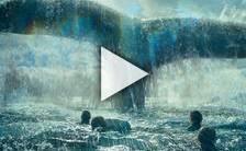 Bande-annonce du film Au coeur de l'océan