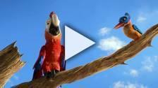 Bande-annonce du film Robinson Crusoe