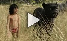 Bande-annonce du film Le Livre de la Jungle