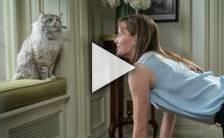 Bande-annonce du film Ma vie de chat