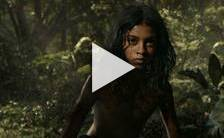 Bande-annonce du film Mowgli