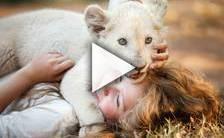 Teaser du film Mia et le Lion Blanc